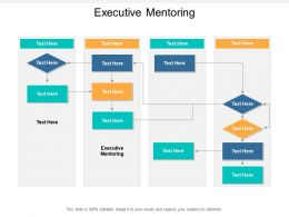 Executive Mentoring Ppt Powerpoint Presentation Inspiration Master Slide