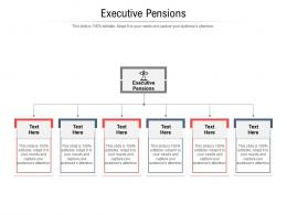 Executive Pensions Ppt Powerpoint Presentation Infographics Display Cpb