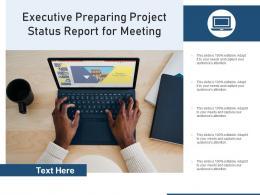 Executive Preparing Project Status Report For Meeting