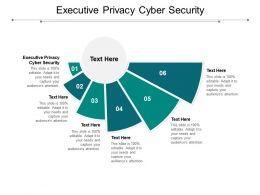 Executive Privacy Cyber Security Ppt Powerpoint Presentation Layouts Guide Cpb
