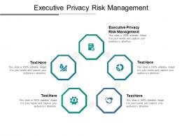 Executive Privacy Risk Management Ppt Powerpoint Presentation Outline Gallery Cpb