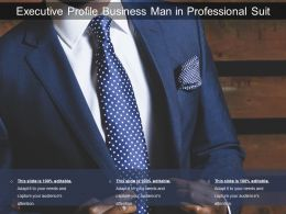 Executive Profile Business Man In Professional Suit