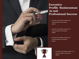 Executive Profile Businessman In Suit Professional Success