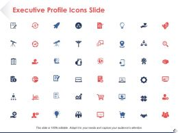 Executive Profile Icons Slide Strategy Ppt Powerpoint Presentation File Tips