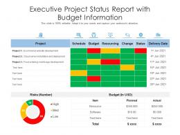 Executive Project Status Report With Budget Information
