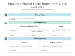 Executive Project Status Report With Goals And Risks
