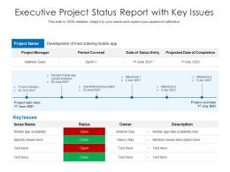 Executive Project Status Report With Key Issues