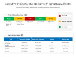 Executive Project Status Report With Sprint Deliverables