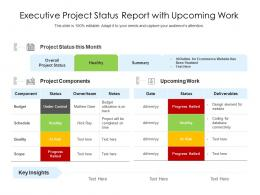 Executive Project Status Report With Upcoming Work