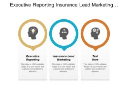Executive Reporting Insurance Lead Marketing Global Lead Management Cpb