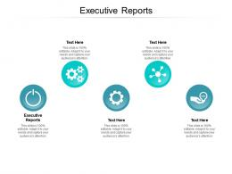 Executive Reports Ppt Powerpoint Presentation Professional Outfit Cpb