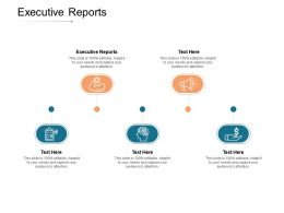 Executive Reports Ppt Powerpoint Presentation Summary Themes Cpb