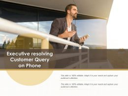 Executive Resolving Customer Query On Phone