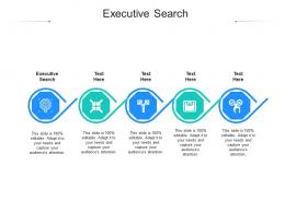 Executive Search Ppt Powerpoint Presentation Slides Graphic Tips Cpb