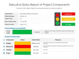 Executive Status Report Of Project Components