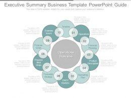 Executive Summary Business Template Powerpoint Guide