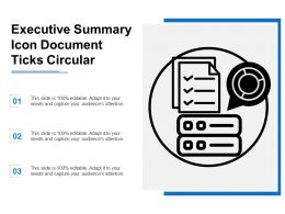 Executive Summary Icon Document Ticks Circular