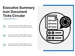 Executive Summary Icon Document Ticks Circular