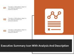 Executive Summary Icon With Analysis And Description