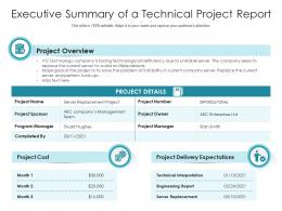 Executive Summary Of A Technical Project Report
