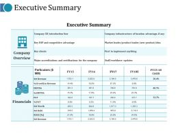 Executive Summary Ppt Gallery Layouts