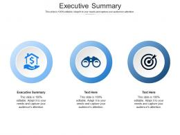 Executive Summary Ppt Powerpoint Presentation Icon Show Cpb