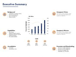 Executive Summary Ppt Powerpoint Presentation Infographic Template Themes