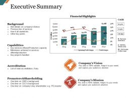 Executive Summary Ppt Slide