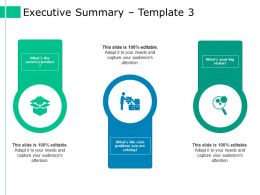 Executive Summary Ppt Styles Model