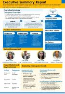 Executive Summary Report Presentation Report Infographic PPT PDF Document
