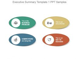 Executive Summary Template 1 Ppt Samples