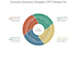 Executive Summary Template 2 Ppt Sample File