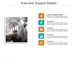 Executive Support System Ppt Powerpoint Presentation Layouts Backgrounds Cpb