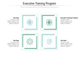 Executive Training Program Ppt Powerpoint Presentation Infographic Template Vector Cpb