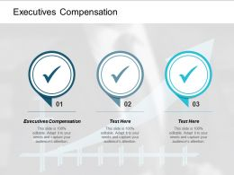 Executives Compensation Ppt Powerpoint Presentation Infographics Background Image Cpb