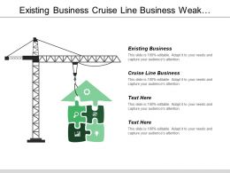 Existing Business Cruise Line Business Weak Performance Business Line