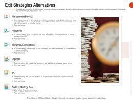 Exit Strategies Alternatives Ppt Powerpoint Presentation Gallery Diagrams
