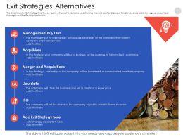 Exit Strategies Alternatives Shares Powerpoint Presentation Elements