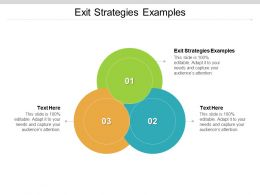 Exit Strategies Examples Ppt Powerpoint Presentation Gallery Graphics Cpb