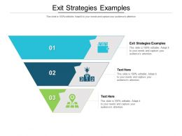 Exit Strategies Examples Ppt Powerpoint Presentation Inspiration Layout Cpb