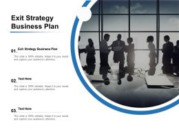 Exit Strategy Business Plan Ppt Powerpoint Presentation Background Designs Cpb