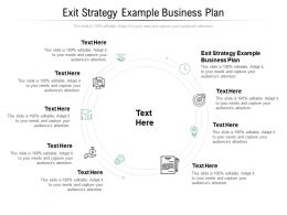 Exit Strategy Example Business Plan Ppt Powerpoint Presentation Inspiration Template Cpb
