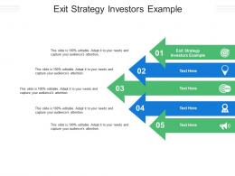 Exit Strategy Investors Example Ppt Powerpoint Presentation Gallery Skills Cpb