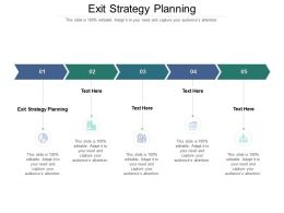 Exit Strategy Planning Ppt Powerpoint Presentation Summary Format Cpb