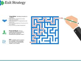 Exit Strategy Ppt Summary Template