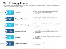 Exit Strategy Routes Acquihires Ppt Powerpoint Presentation Slides Information