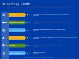 Exit Strategy Routes IPO Ppt Powerpoint Presentation Icon Display
