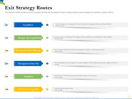 Exit Strategy Routes Sell The Shares Ppt Powerpoint Presentation Styles Inspiration