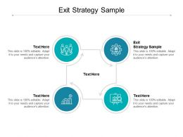 Exit Strategy Sample Ppt Powerpoint Presentation File Guide Cpb
