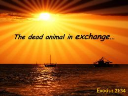Exodus 21 34 The Dead Animal In Exchange Powerpoint Church Sermon